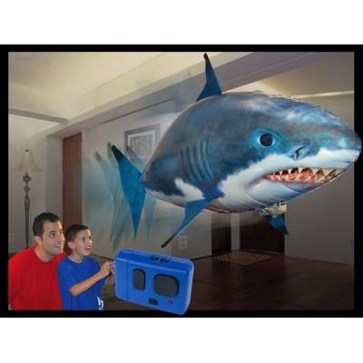 Requin volant télécommandé Accueil
